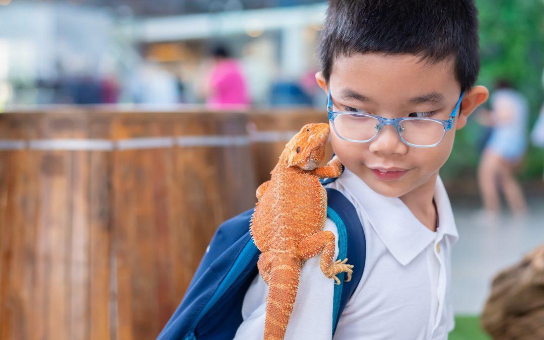 Pets Teaching Kids Responsibility